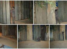 ساخت درب ورودی کارگاهی